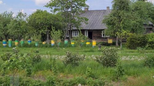 Bičių ūkis